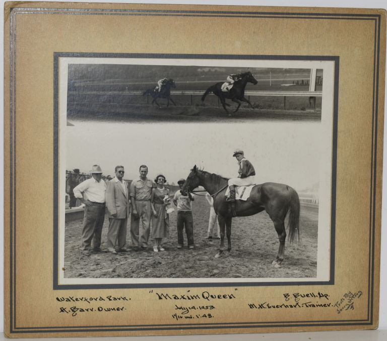 "RACEHORSE ""MAXIM QUEEN"". ORIGINAL PHOTO."