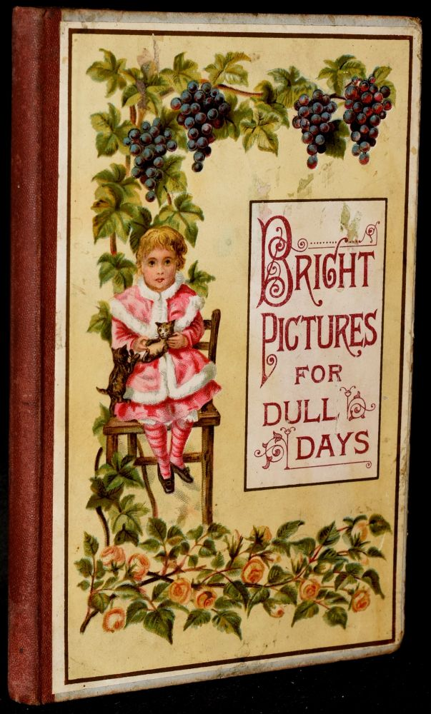 BRIGHT PICTURES FOR DULL DAYS