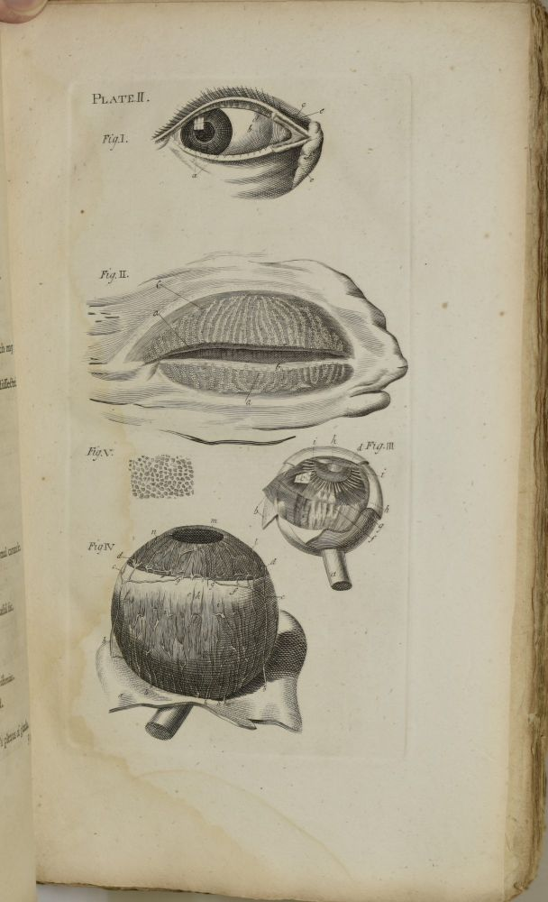 THE RATIONAL PRACTICE OF PHYSIC. IN FOUR VOLUMES. VOL. III. [ONLY] CONTAINING TREATISES ON ONE HUNDRED AND EIGHTEEN DISEASES OF THE EYES, WITH COPPER PLATES | THE HISTORY AND USE OF ELECTRICITY IN VARIOUS DISORDERS. William Rowley.