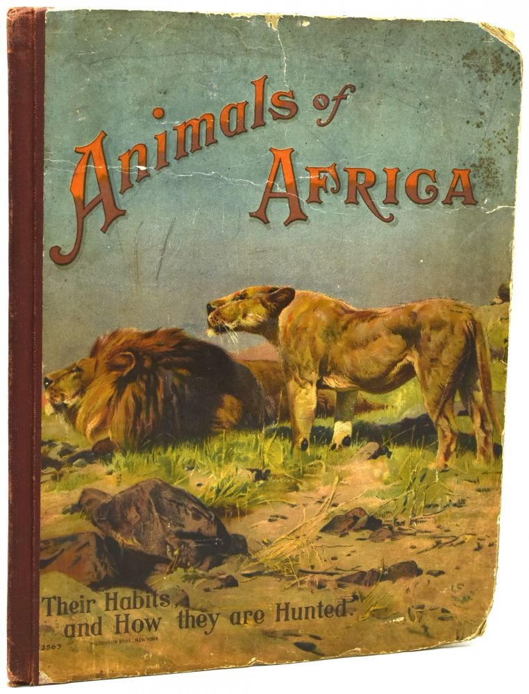 ANIMALS OF AFRICA. THEIR HABITS AND HOW THEY ARE HUNTED.
