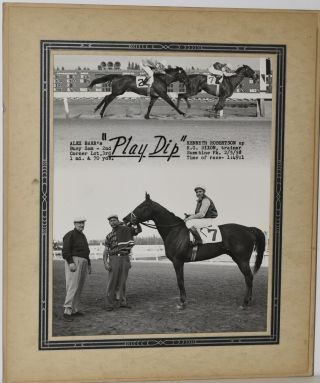 "RACEHORSE ""PLAY DIP"". ORIGINAL PHOTO."